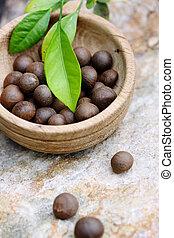 Semillas del arbusto de té