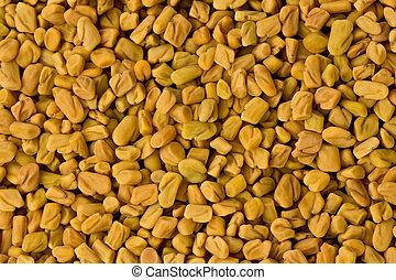 Semillas Fenugreek (Trigonella foenum-graecum)