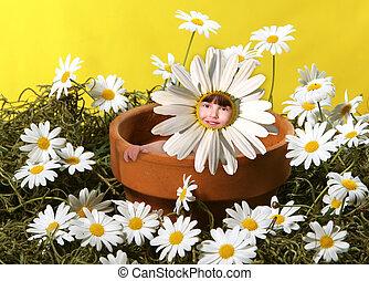 Sentado en una olla de flores