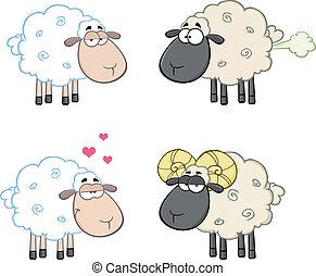 sheep, conjunto, colección, 4., caracteres
