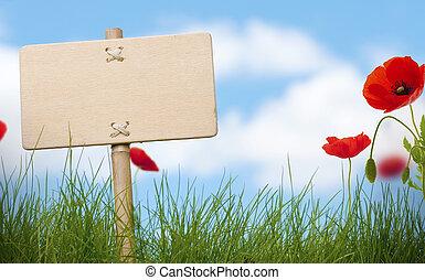 Signos de madera en blanco y hierba verde con amapolas flores, cielo azul y nubes borrosas, espacio para texto