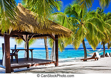 sillas, playa, árboles, abandonado, palma, gazebo