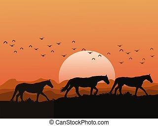 silueta, colinas, montañas, cielo, manada, tiene, caballos, naranja, ocaso, plano de fondo