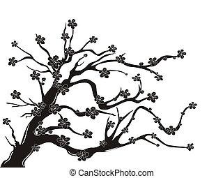 Silueta de árbol de cerezo