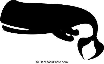 Silueta de ballena espermática