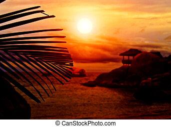 Silueta de bungalow Sunset