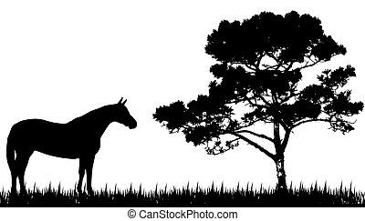 Silueta de caballo y árbol