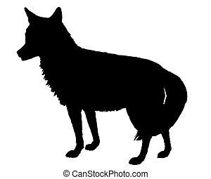 Silueta de Coyote