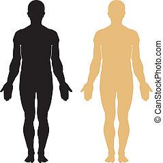 Silueta de cuerpo humano