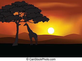 Silueta de fondo Safari
