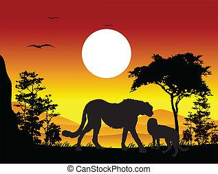 Silueta de guepardo