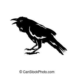 Silueta de pájaro cuervo
