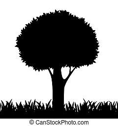 Silueta de un árbol y hierba.