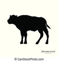 silueta, fondo., búfalo, aislado, negro, drawing., blanco, toro, image., animales, américa, norte, vaquita, bisonte, salvaje, joven