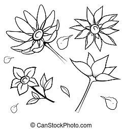 Silueta negra de flores. Ilustración de vectores.