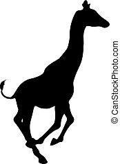 Silueta negra de una jirafa. Ilustración vectorial aislada
