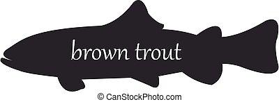 silueta, o, plano de fondo, pez, trutta, marrón, blanco, trucha, negro, salmo