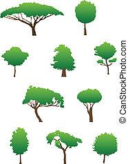 siluetas, árbol