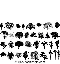 siluetas, árboles