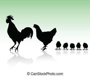 Siluetas de familia de pollos