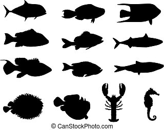 Siluetas de vida marina y peces
