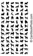 Siluetas negras de diferentes razas de perro. Una ilustración del vector