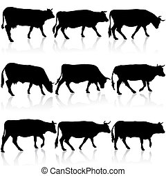 Siluetas negras de vaca. Ilustración de vectores.