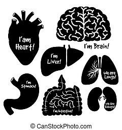 Siluetas negras, iconos del vector de órganos internos humanos fijados