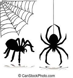 siluetas, vector, araña, dos