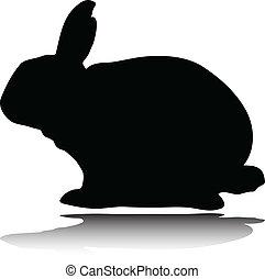 siluetas, vector, conejo