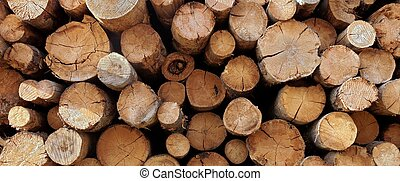 silvicultura, grande, industria, troncos, woodpile