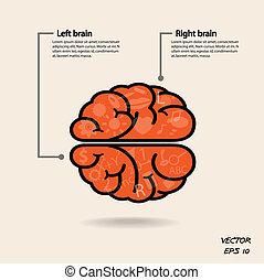 Simbolo cerebral izquierdo y derecho, signo de creatividad, símbolo de negocios, conocimiento y icono educativo