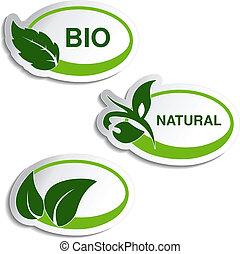Simbolos naturales vectores, pegatinas con hoja, planta