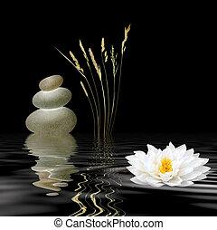 Simbolos Zen