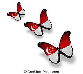 singaporean, mariposas, tres, aislado, bandera, blanco