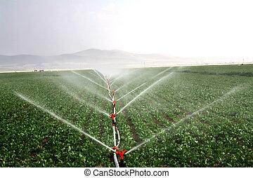 Sistemas de riego en una imagen de campo agrícola