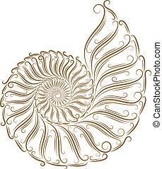 Sketch of seashells