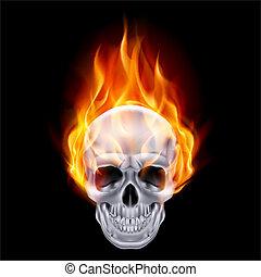 skull., ardiente