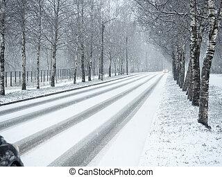 snowfall., país, invierno, camino