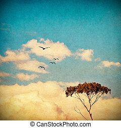 soñador, cielo, árbol