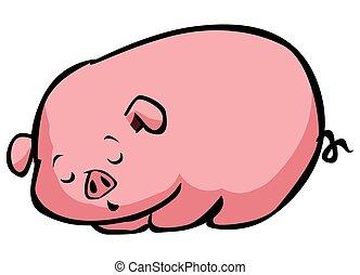 soñoliento, cerdo