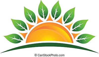 Sol con hojas de logotipo