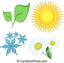 Sol de copos de nieve de flor de hoja