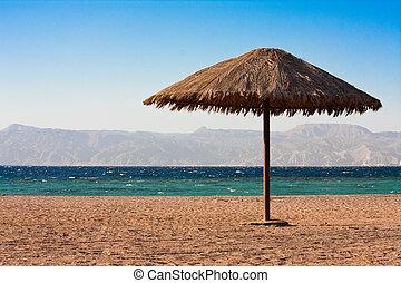 Sole sunshade en una playa
