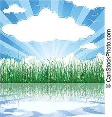 Soleado fondo de verano con hierba, agua y nubes