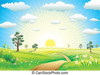 soleado, pradera