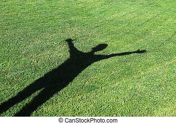 sombra, pasto o césped, humano