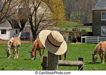 Sombrero de paja con granja Amish en el fondo