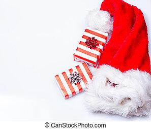 Sombrero de Papá Noel de Navidad