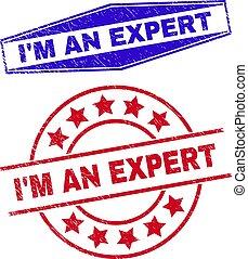 soy, círculo, formas, experto, grunged, sellos, hexágono